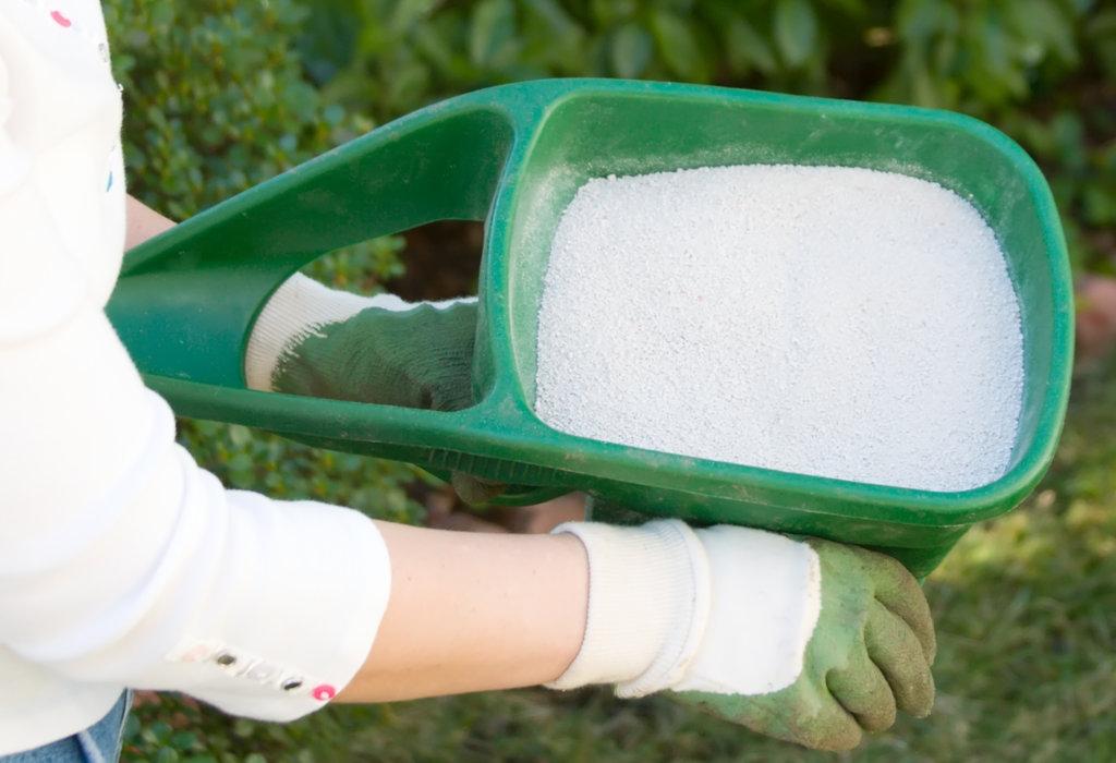 Graszoden onderhoud - waarom is kalk trooien nodig - foto
